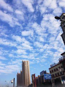 「上海写録365左右」始まります