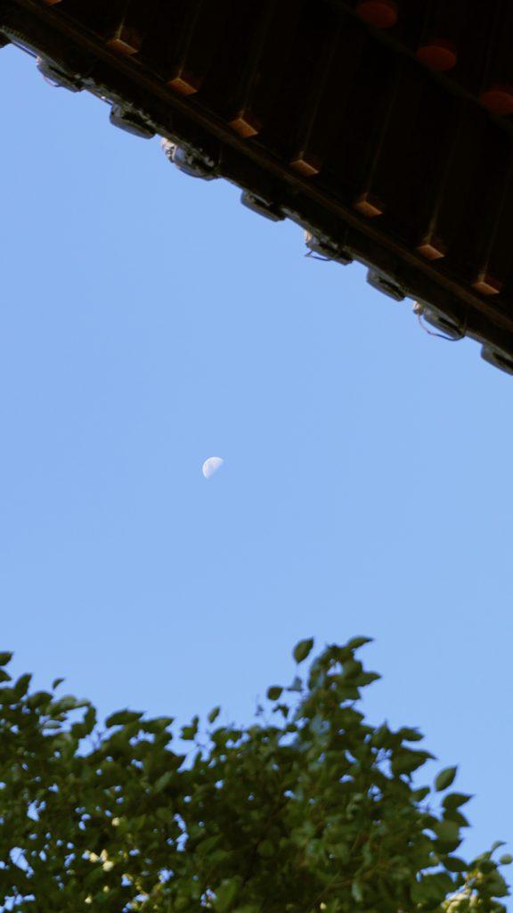 白昼的月亮(Báizhòu de yuèliàng:真昼の月)
